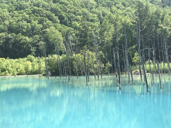 晴れの日の青い池