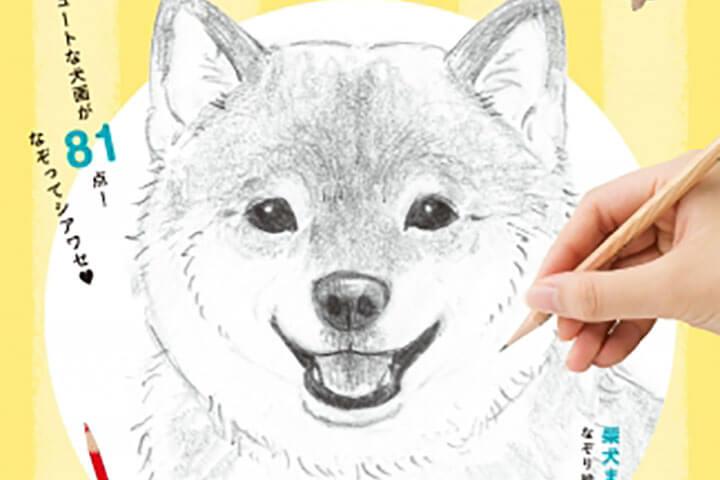 えんぴつで簡単かわいい犬なぞり絵8月23日水発売