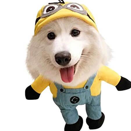 ミニオンズに仮装した犬