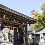 【関東】わんことお参りできる神社5選