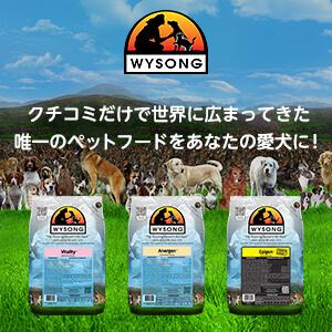 Wysong(ワイソン)