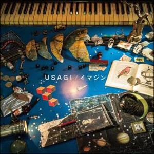 144183-07_usagi_imagine