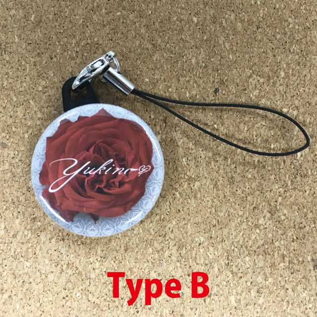 2283684-strap_typeb