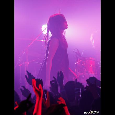 2761918-fuazoo_live