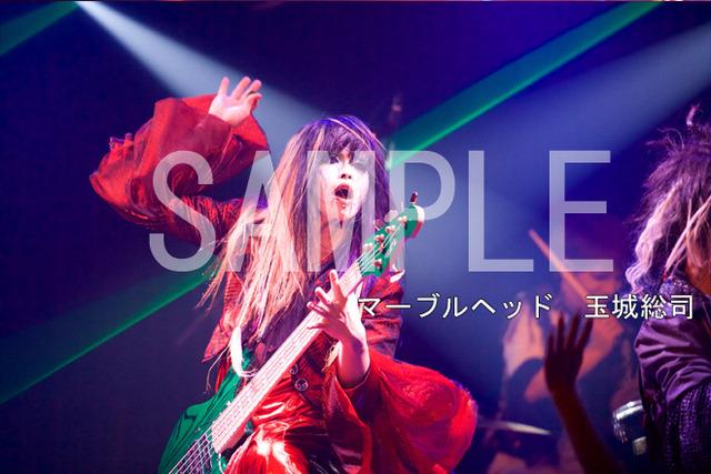 3074575-marble_tamaki
