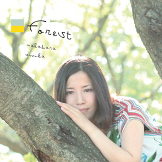 4160910-forest