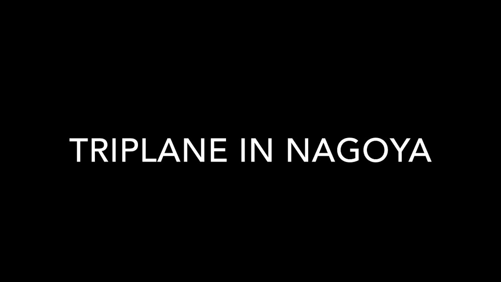 4162658-triplane