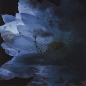 4178572-luna_sea_memorial_cover_album_-rebirth-