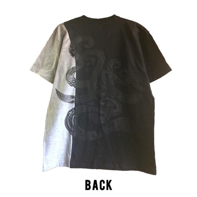 4243010-blackback
