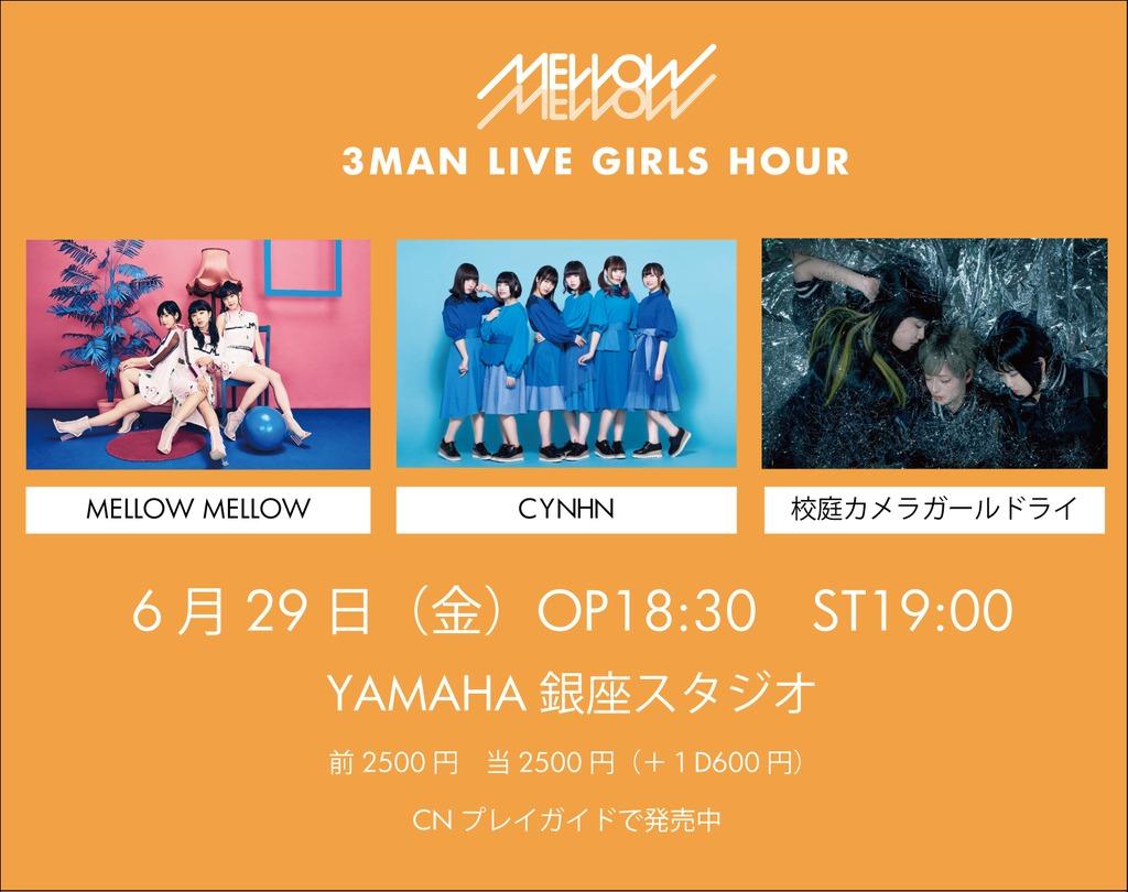 4250197-0629yamaha_2
