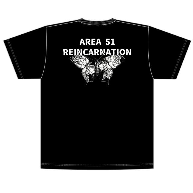 4275229-butterfly02