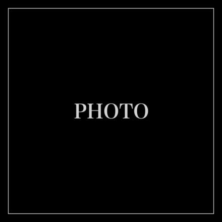 4305305-photo