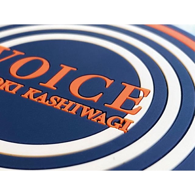 4528806-voice3