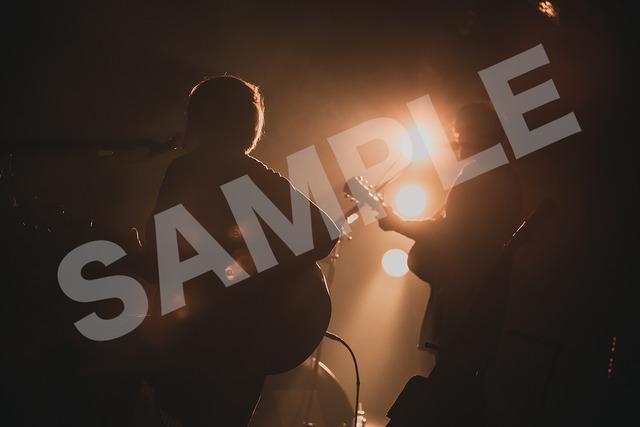 4529068-sample