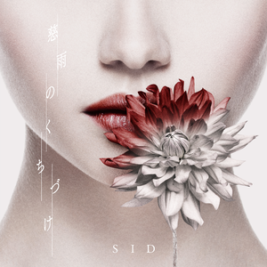 4571653-sid_haishin_jiu_0608