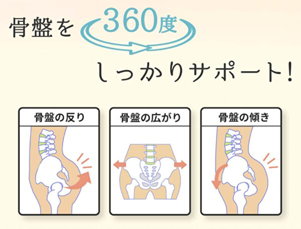 骨盤をサポート