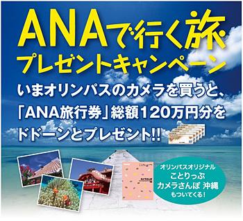 ANAで行く旅プレゼントキャンペーン