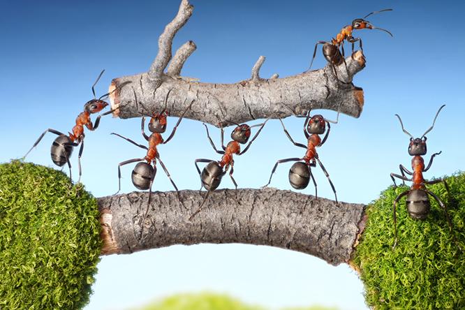需要創造型経営に不可欠な創造的な組織作り