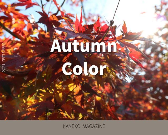 "KANEKO MAGAZINE Vol.9 ""AUTUMN COLOR"""