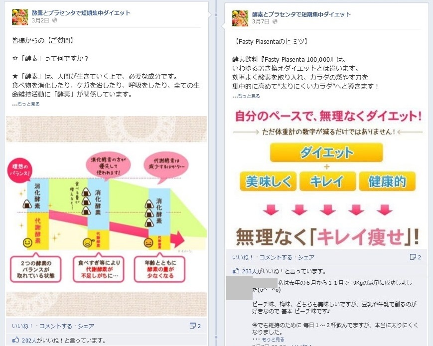 Facebook事例 ナチュラルガーデン3