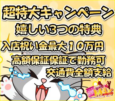 超特大キャンペーン開催中!!の画像