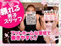 Sakura YESグループ+画像3