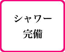 ネクストライブ+画像7