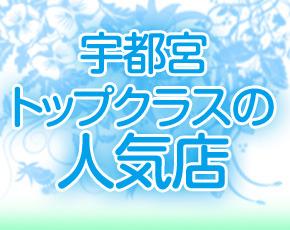 パンチライン+画像2