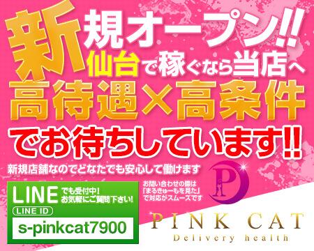 PINK CAT+画像1