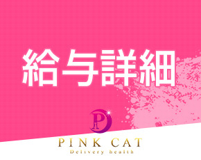 PINK CAT+画像2