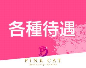 PINK CAT+画像4