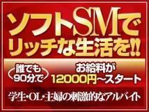 ギルティM女痴女総合ソフトSM専門店+画像5