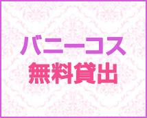 ドMなバニーちゃん すすきの店+画像8