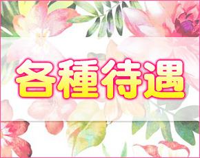 プリンセスセレクション北大阪+画像2