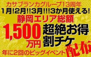 割チケ13静岡200x320-2