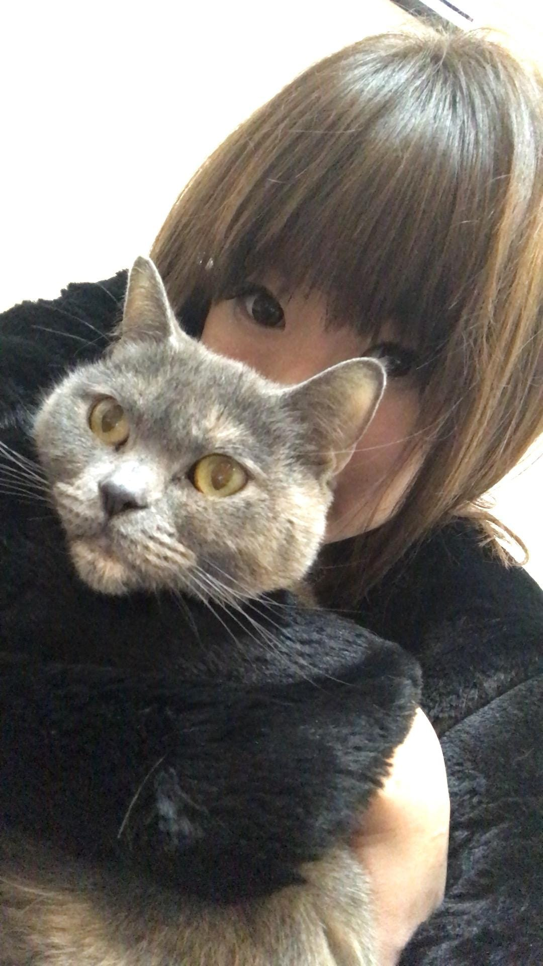 https://s3-ap-northeast-1.amazonaws.com/files.fuzoku.jp/img/shop/kamign/diary/15328660/d_0_20180122082820106.jpeg