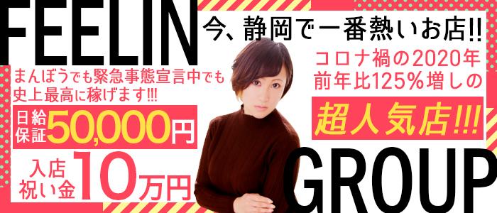 ほんとうの人妻 静岡店(FG系列)の風俗求人画像