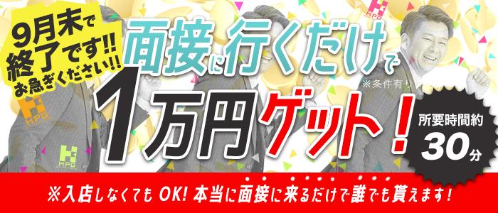 神戸ホットポイントグループの風俗求人画像