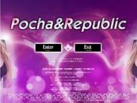 Pocha&Republic