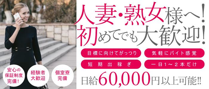 姉系若妻専門~Tsubaki~の風俗求人画像