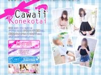 Cawaii Konekotai~かわいい子猫隊~