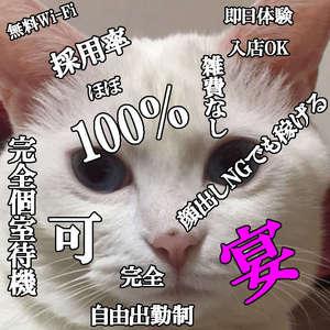 佐賀、唐津でお店探しに困ったら当店『EN』で働いてみませんか♪ ENの求人ブログ