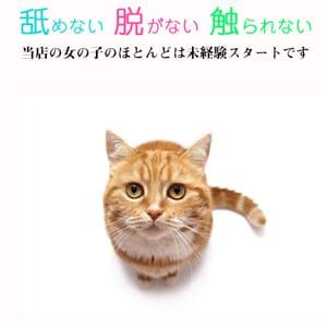 超ソフトサービスのアルバイト!|滋賀女学院の求人ブログ