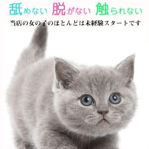 いつでも体験入店可能!|滋賀女学院の求人ブログ