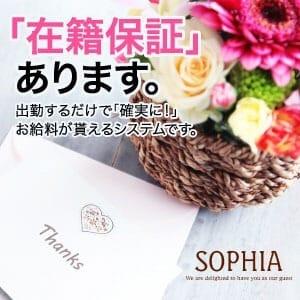 歌舞伎町最大級☆店舗型ヘルス(SOPHIA)|SOPHIAの求人ブログ