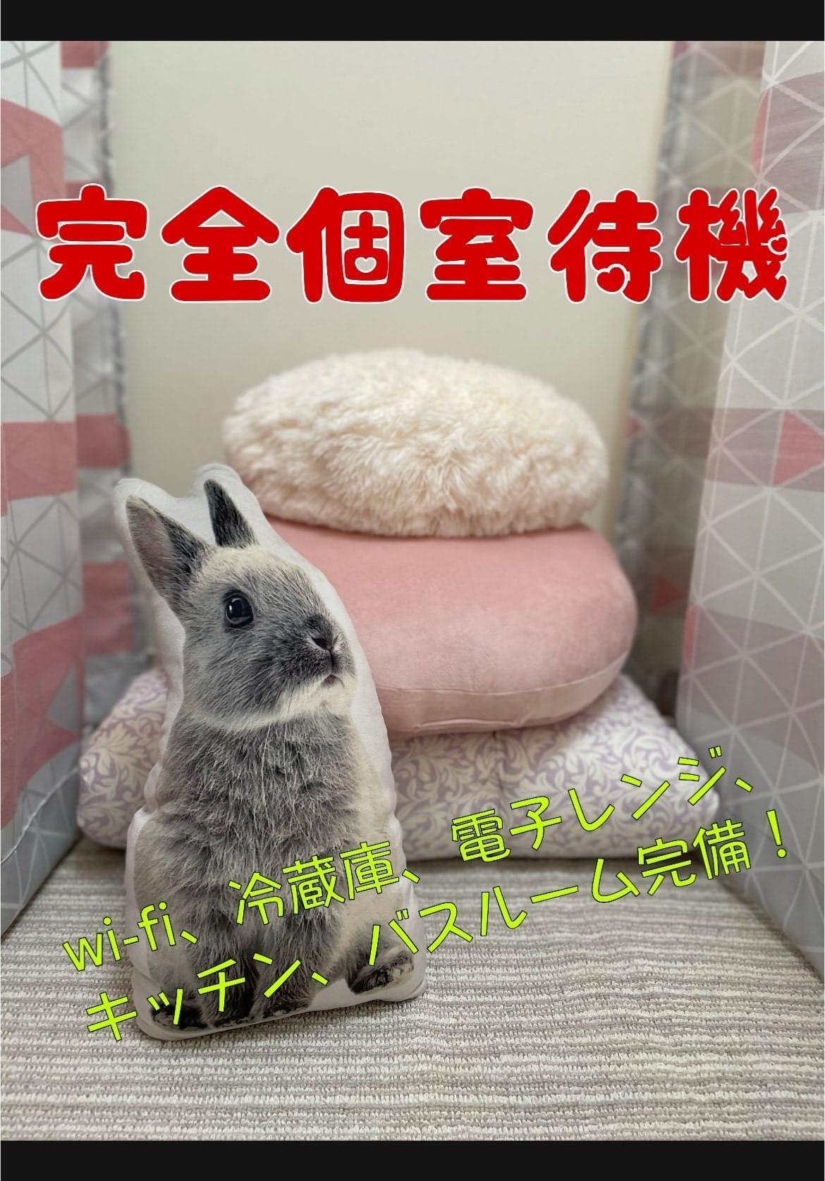 プライベート空間ばっちり♪ゆっくり過ごせる環境、準備しております♪ 香川高松ちゃんこの求人ブログ