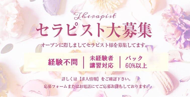 90分最大2万円可能!!|Sylph(シルフ)の求人ブログ