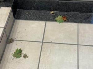 木枯らし ナース・女医治療院(札幌ハレ系)の求人ブログ