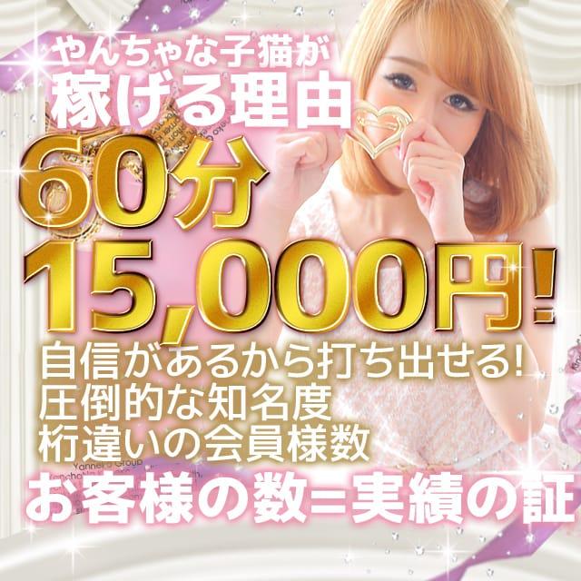 やんちゃな子猫が稼げる理由♪|やんちゃな子猫 日本橋店の求人ブログ