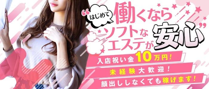 【簡単】気になる、お給与計算シミュレーション(*'ω'*)|錦糸町 モデル系美女専門風俗エステGinGinクリニックの求人ブログ